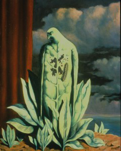 Magrittemed